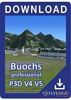 Airport Buochs professional V4